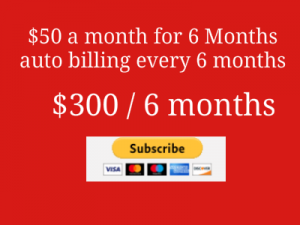 Payment Page Ad for 6 months